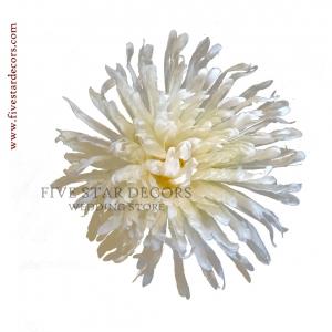 Chrysanthemum Loose Flower