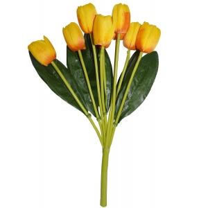 Tulip bunch x 9