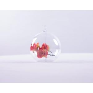 """Acrylic ball  3.5"""" Hanging"""